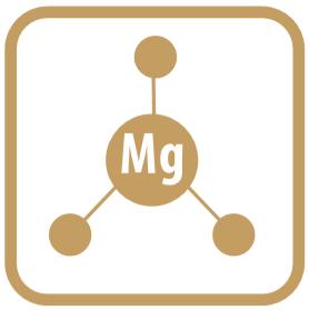 Organiczna Forma Magnezu